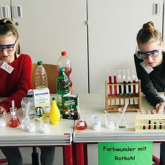 Naturwissenschaftliche Experimente zum Mitmachen